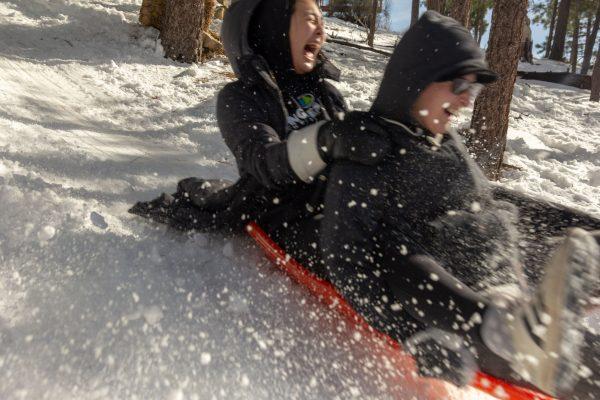 sledding winter camp